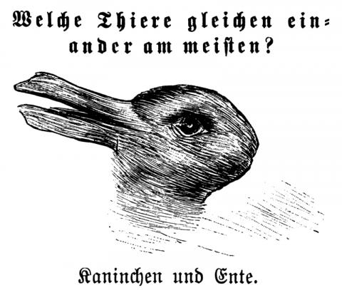 鴨兔錯覺(Rabbit-duck illusion)